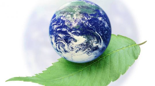 Celebrate Earth Day with GLOBAL CATHOLIC CLIMATE MOVEMENT