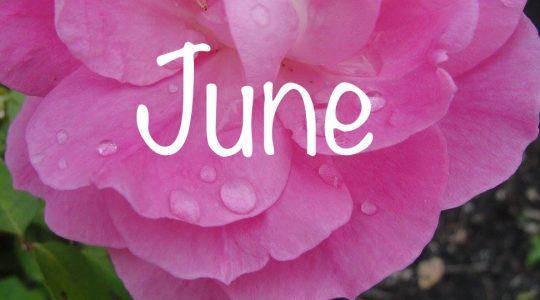 June message from National President Margaret Ann Jacobs