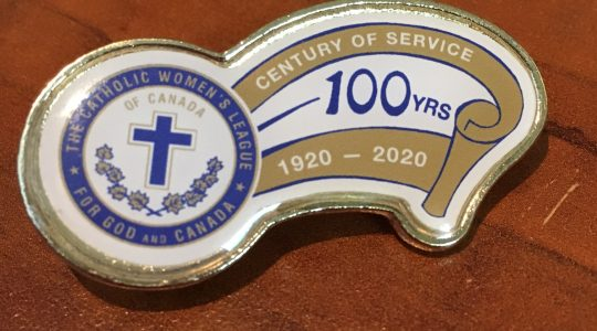 New Scarf Holder and 100 Year Anniversary Pin