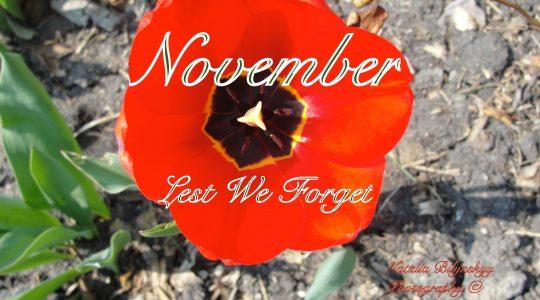 November message from National President, Margaret Ann Jacobs