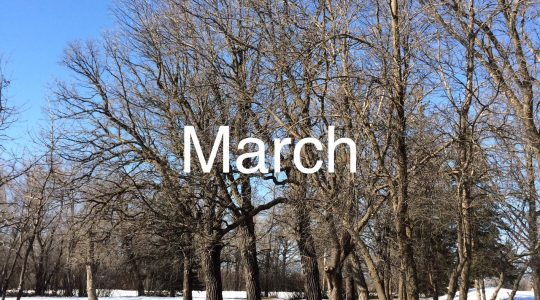 March message from National President, Margaret Ann Jacobs
